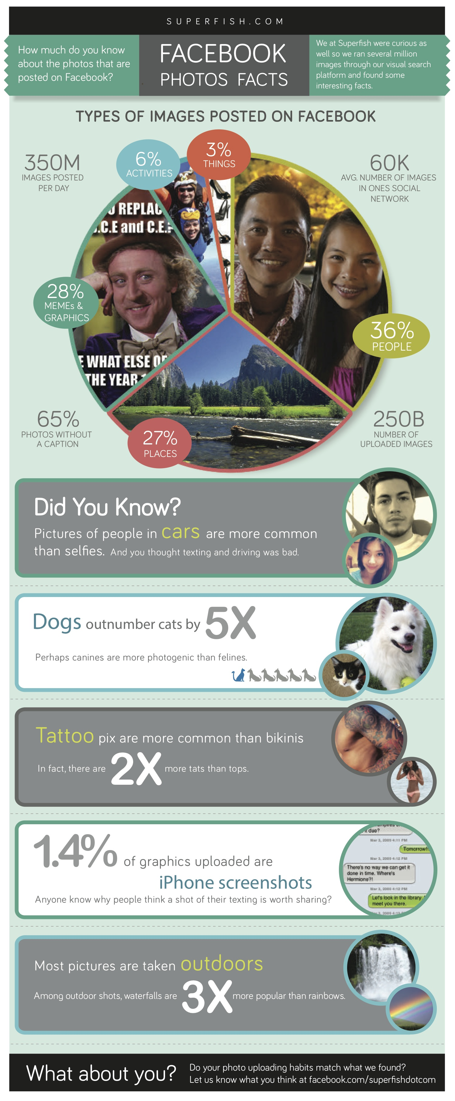 Facebook Photo Facts