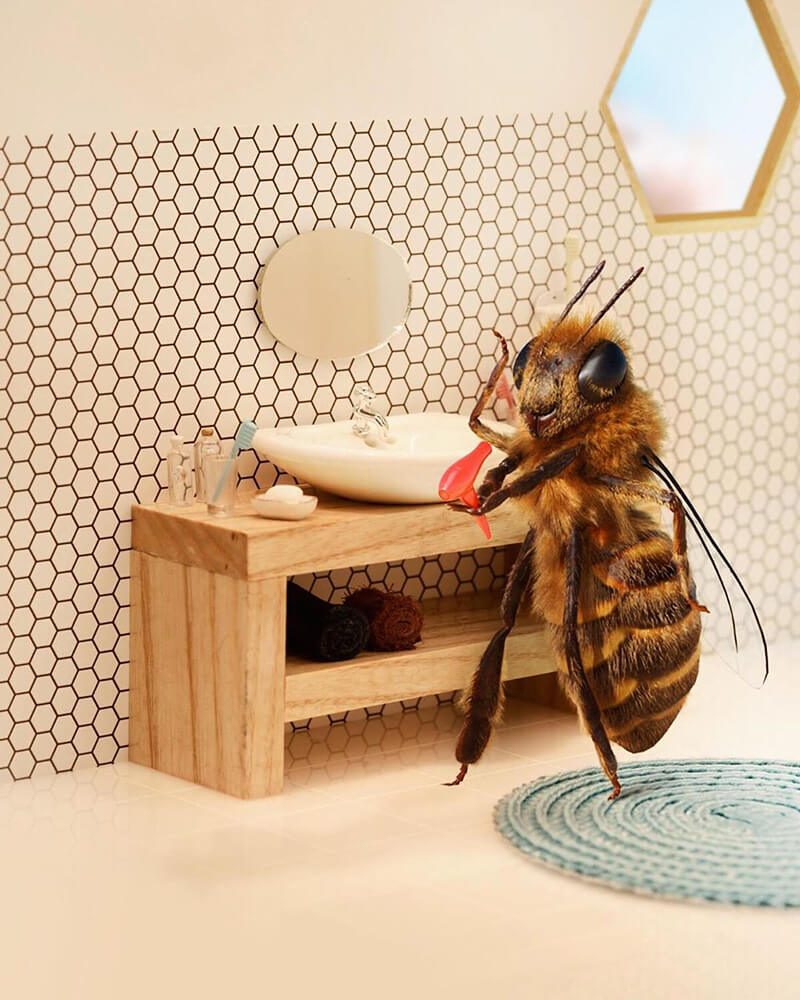 Meet The World's First Bee Influencer On Social Media